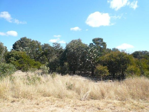 Lot 11 Western Road, Tara QLD 4421