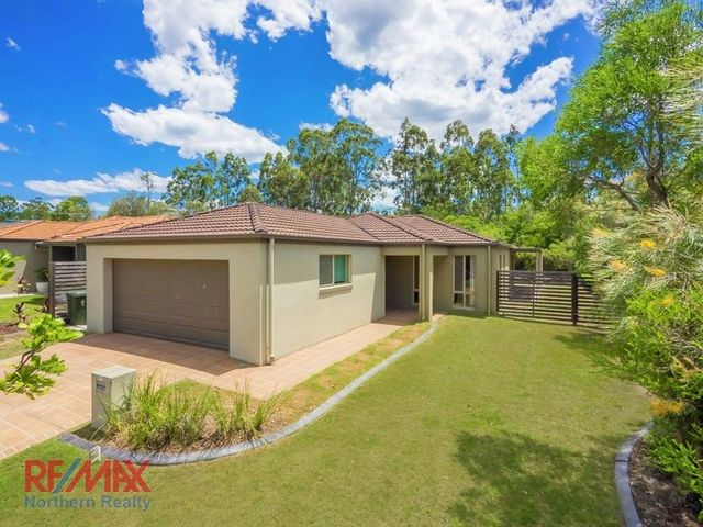 7 Melicope Place, QLD 4034