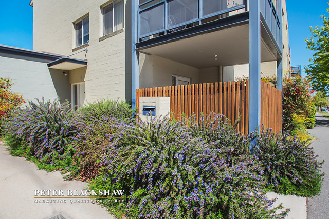 4/80 Gozzard Street, ACT 2912