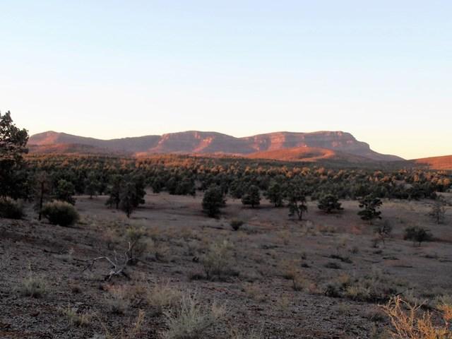 52 Flinders Ranges W Wilpena Pound, Hawker SA 5434
