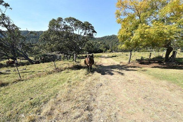 537 Tuntable Creek Road, NSW 2480