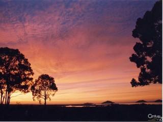 101 Clarke St Pindimar NSW 2324