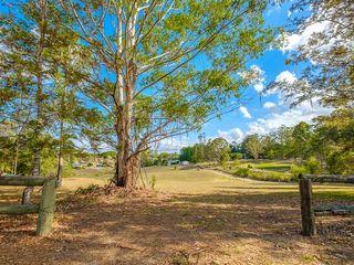 99 Green Trees Road