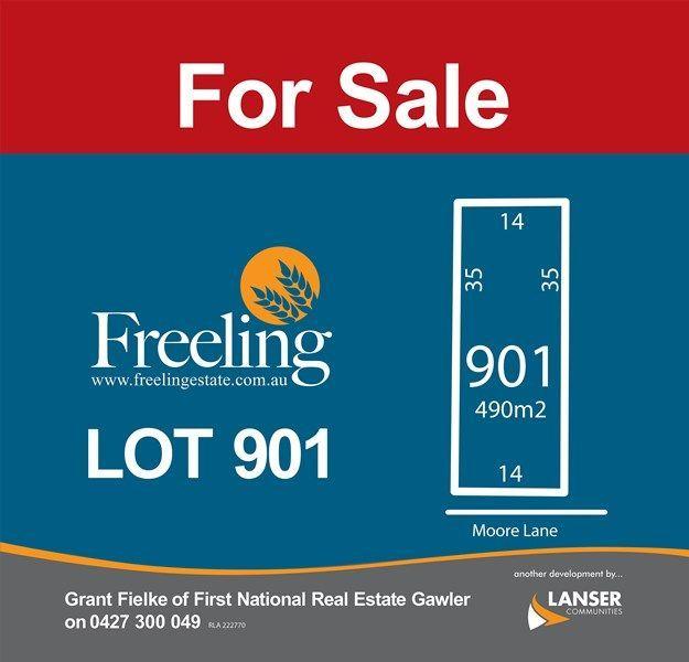 Lot 901 Moore Lane, SA 5372