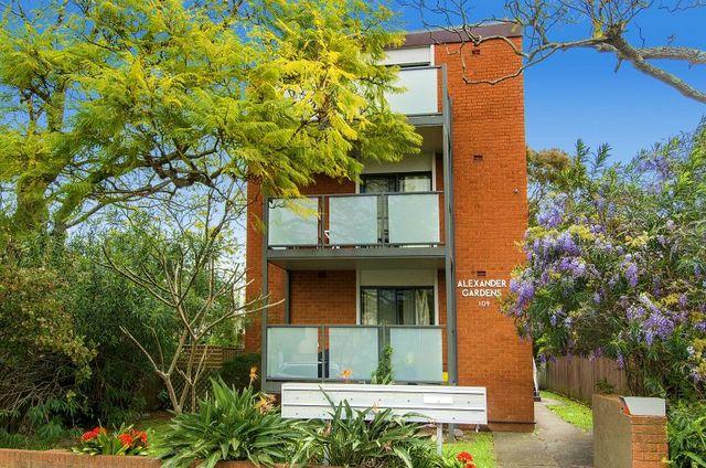 3/109 Cardigan Street, NSW 2048