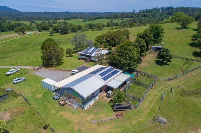 50 Gills Road, Lorne NSW 2439