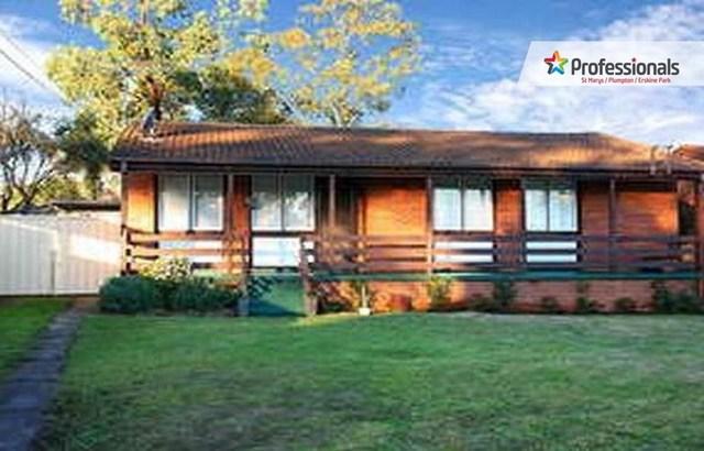 43 Keesing Crescent, Blackett NSW 2770