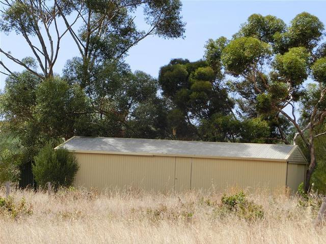 Lot 1 Pheasant Farm Road, Nuriootpa SA 5355