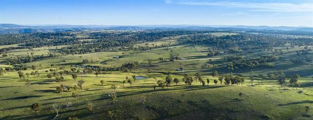 Maria River Cattle Company, Armidale NSW 2350