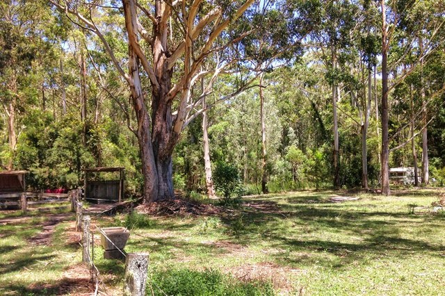 175 Coomba Road, Charlotte Bay NSW 2428