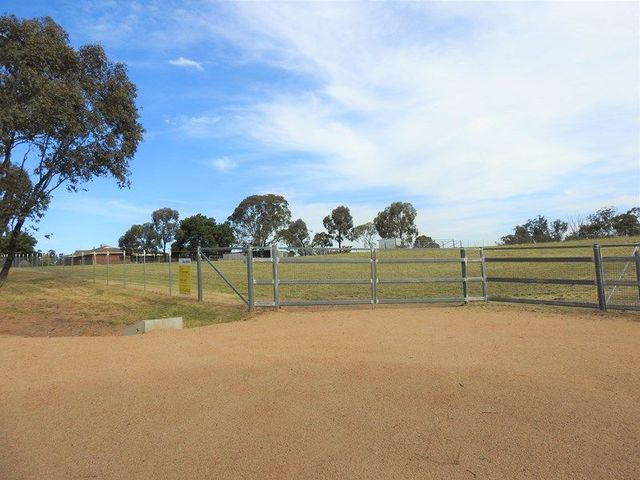 61 Redhill Road, Young NSW 2594