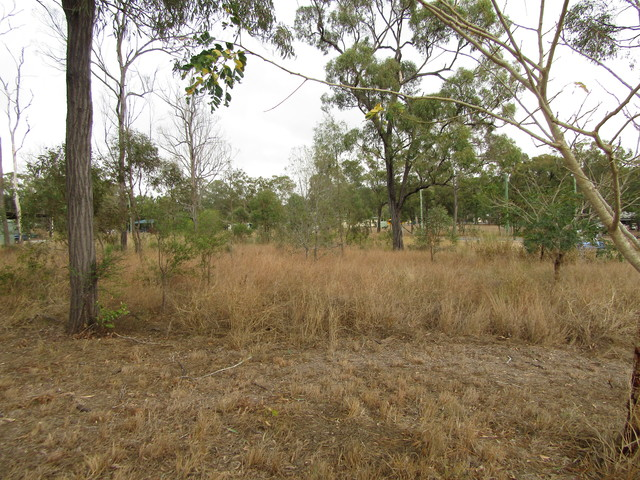 Lot 10 Anderson St, Dallarnil QLD 4621