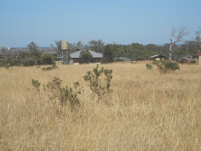 Lot 176 Muster Drive, Napperby SA 5540