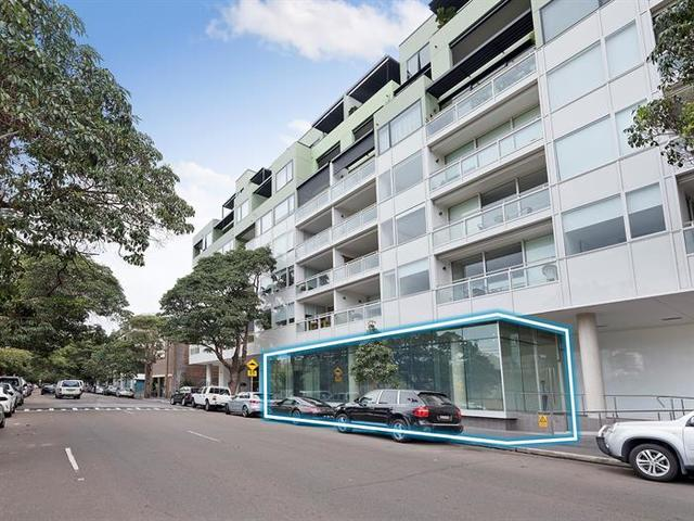 2 Neild Avenue, Darlinghurst NSW 2010