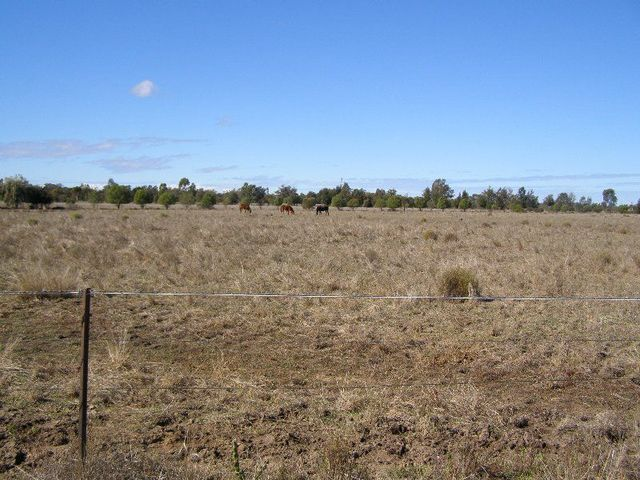 Polo Road, Goondiwindi QLD 4390