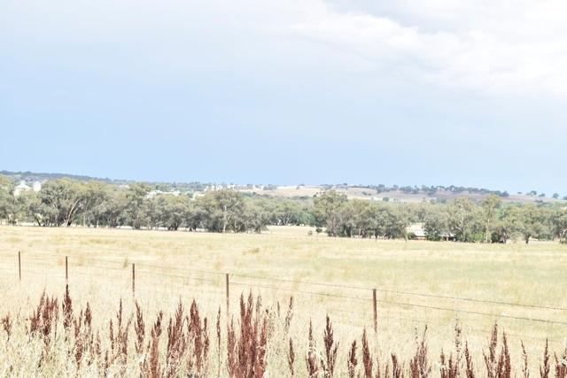 Blocks Manganese Road, Grenfell NSW 2810