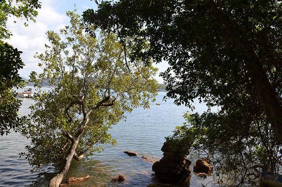 Lot 60 Little Wobby Beach, Little Wobby NSW 2256