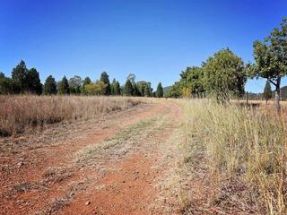 8299 Oxley Highway Gunnedah NSW 2380