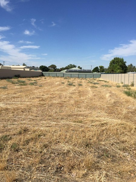 Lot 62 First Street, Napperby SA 5540