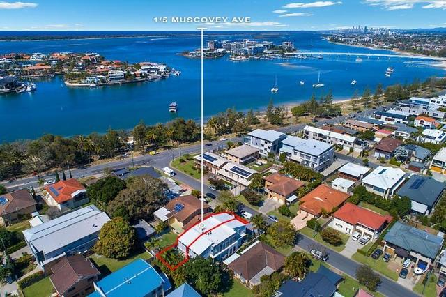 1/5 Muscovey Avenue, Paradise Point QLD 4216