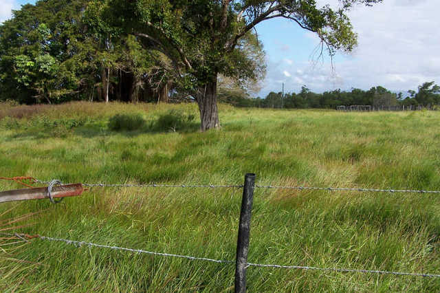 Lot 7 Tully Gorge Road, Tully QLD 4854
