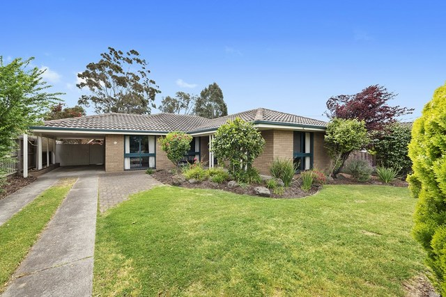 20 Gwyther Road, Highton VIC 3216