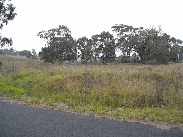 Lot 19 Common Road, Muswellbrook NSW 2333