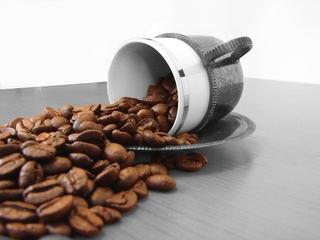 Franchise Cafe Under Management 50kg Coffee