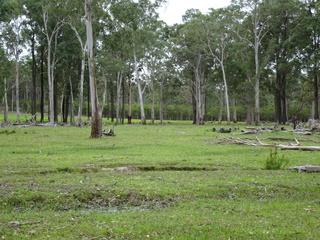 33 Forest Glenn Road