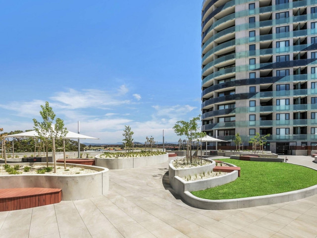 203/1 Anthony Rolfe Avenue, ACT 2912