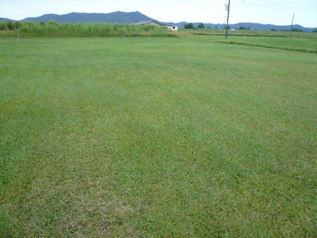 L117 Unnamed Road, Midgenoo QLD 4854