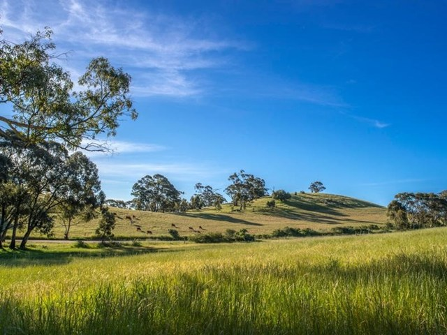 Square Mile Estate, Clare SA 5453