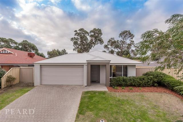 24 Broadford Avenue, Butler WA 6036