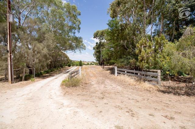 Lot 12 Wilkins Road, Naracoorte SA 5271